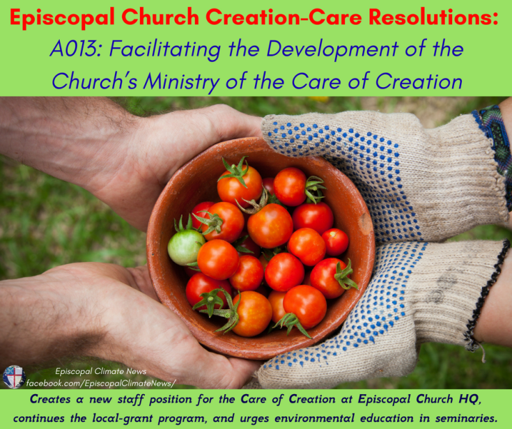 A013_ Facilitating the Development of the Church_s Ministry of the Care of Creation